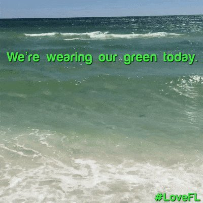 Happy St. Patrick's Day from #Florida! #...