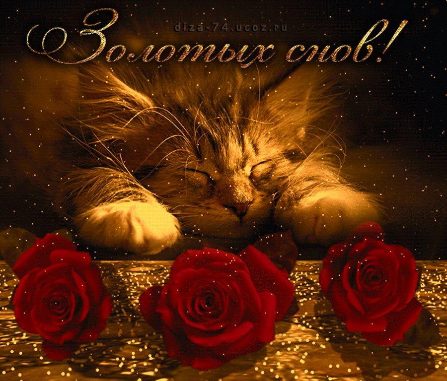 Открытка моя милая доброй ночи