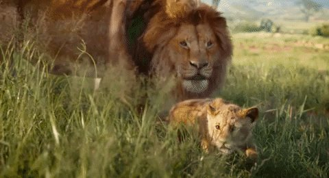 @TwitterMusic @Disney @TwitterMovies #Mufasa is giving a pouncing lesson.