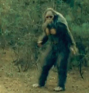 """""""I saw Bigfoot!"""" #AndThenIRolledMyEyes"""
