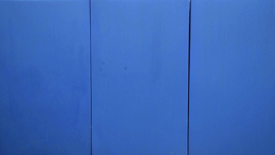 Dunedin Blue Jays