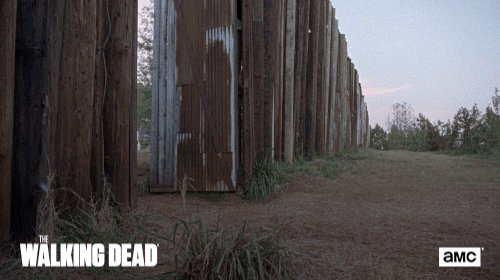 The Walking Dead AMC's photo on #TWD