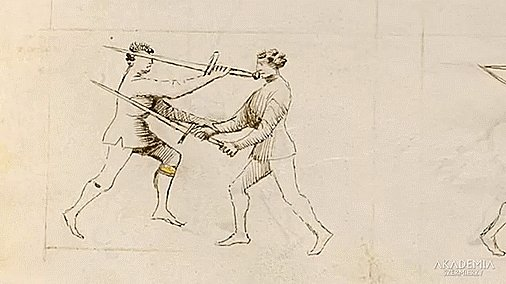 Historically accurate longsword move: if...