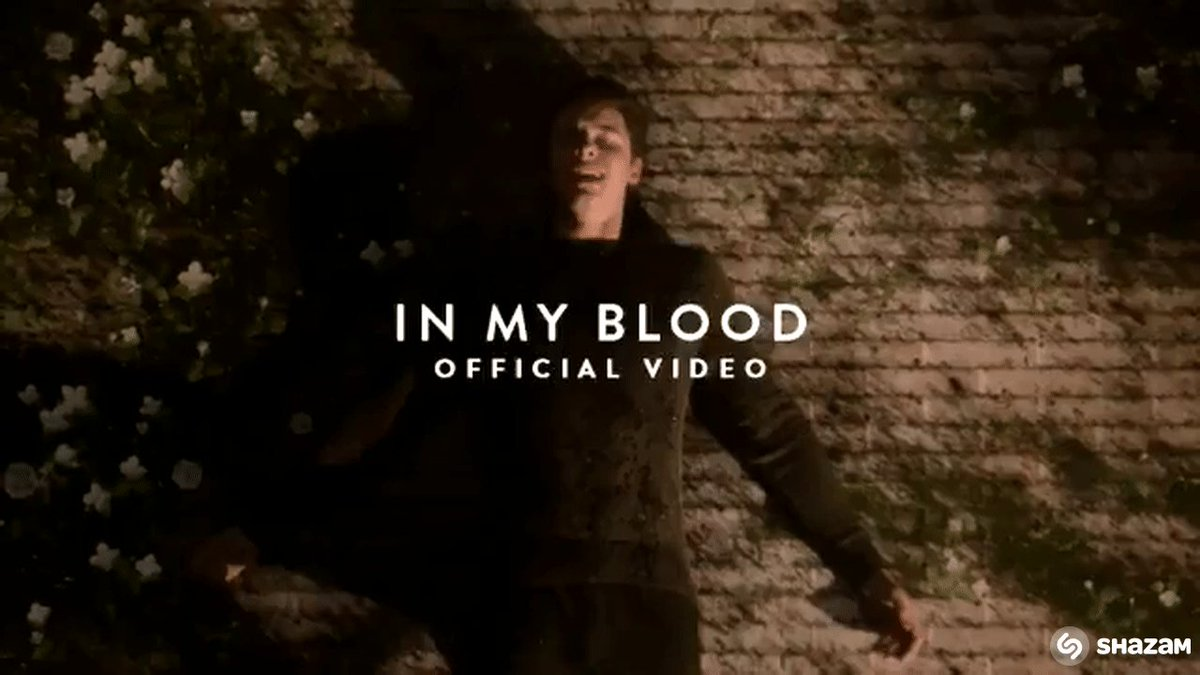 RT if you're watching the brand new #InMyBloodVideo by @ShawnMendes!! youtu.be/36tggrpRoTI 🔥🙌🙏