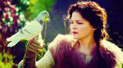 Happy Birthday Ginnifer Goodwin have a beautiful day!