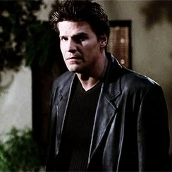 Happy Birthday David Boreanaz !