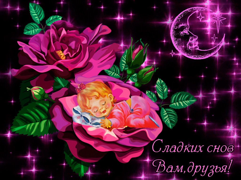 Картинки, спокойной ночи картинки анимация красивая цветы