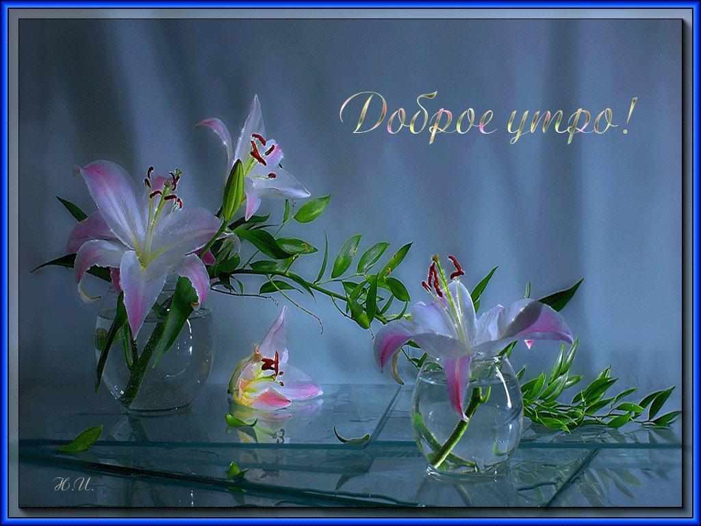 Картинки с добрым утром цветы лилии