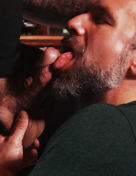 Bears Like Gay Oral Sex, According To Important New Scientific Study