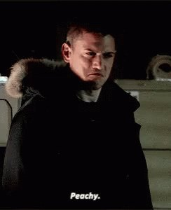 Today is Wentworth Miller\s birthday! Happy birthday Captain Cold!