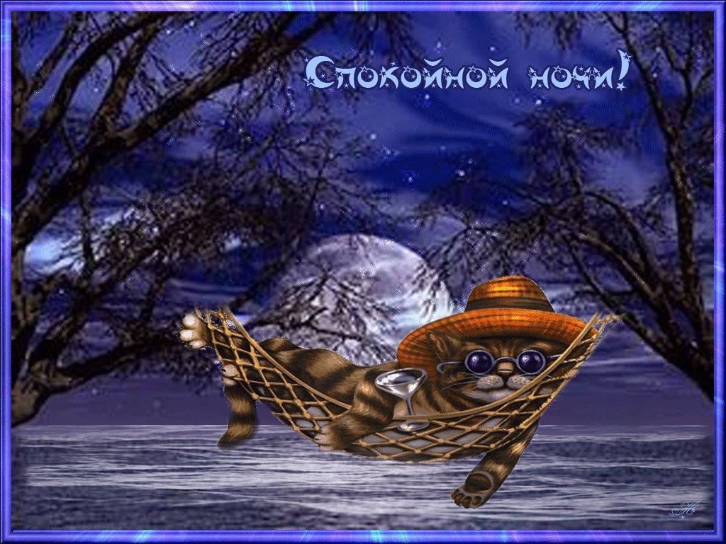 этом анимационные картинки доброй ночи другу моей