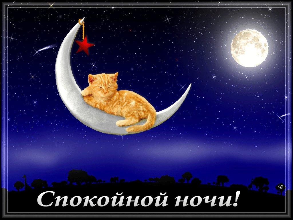Доброй ночи милая картинки анимация