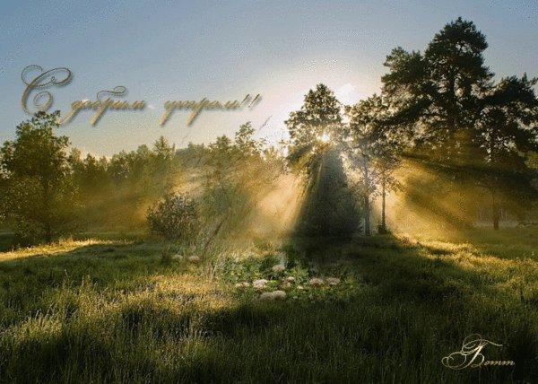 Доброе утро гифка красивая природа