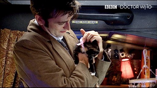 Here's the Tenth Doctor with a kitten to brighten up your day #DoctorWho #internationalcatday