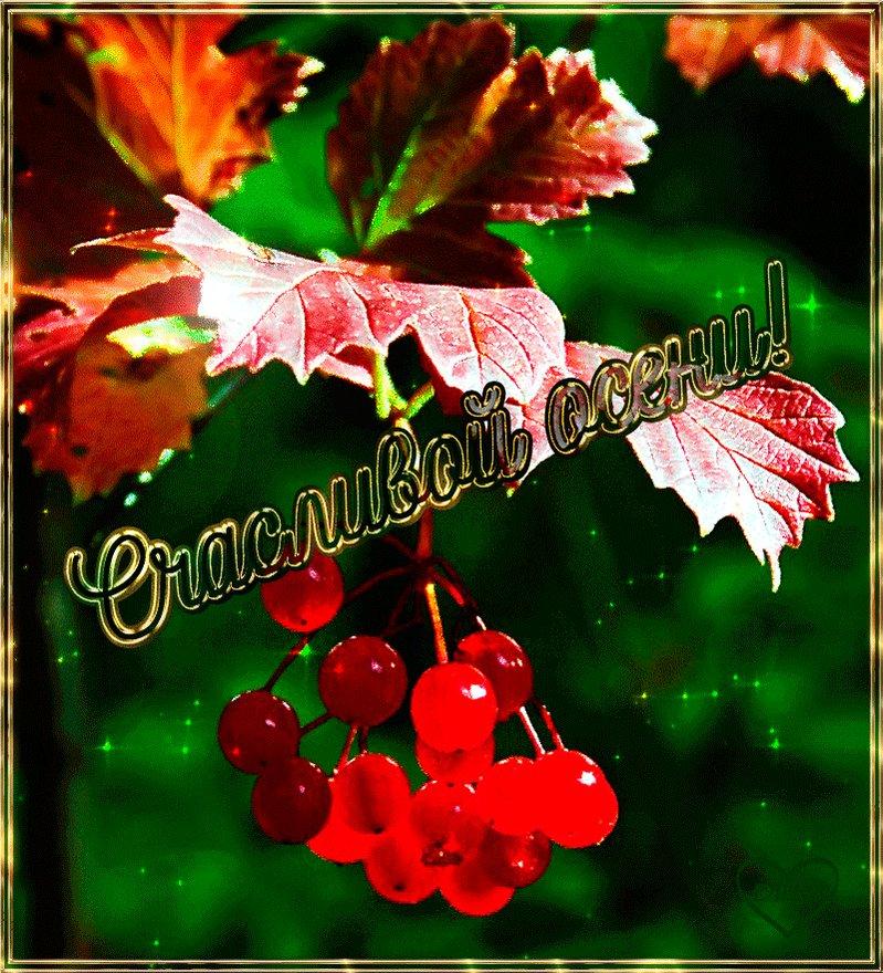 Домиками, открытки про осень и счастье