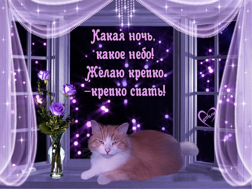 Стихи поздравление, смешные картинки с пожеланиями доброго вечера и спокойной ночи