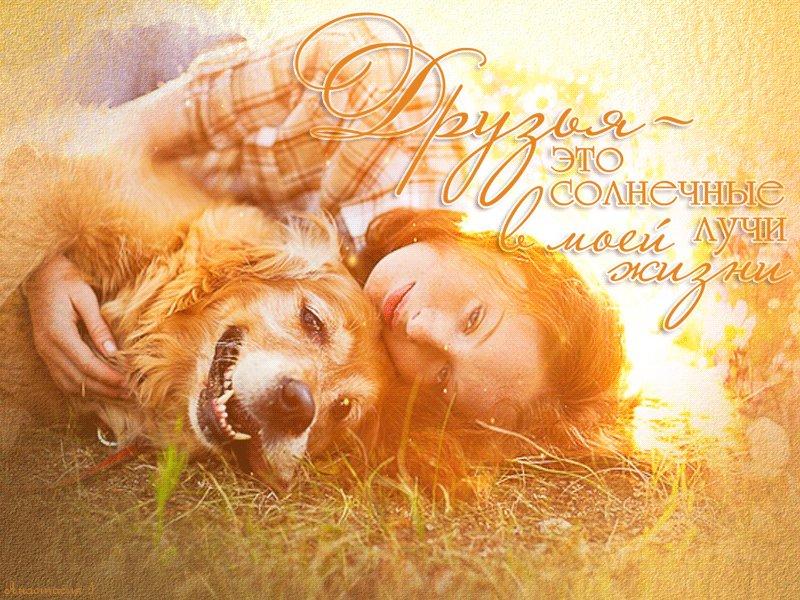Солнечная открытка любимой