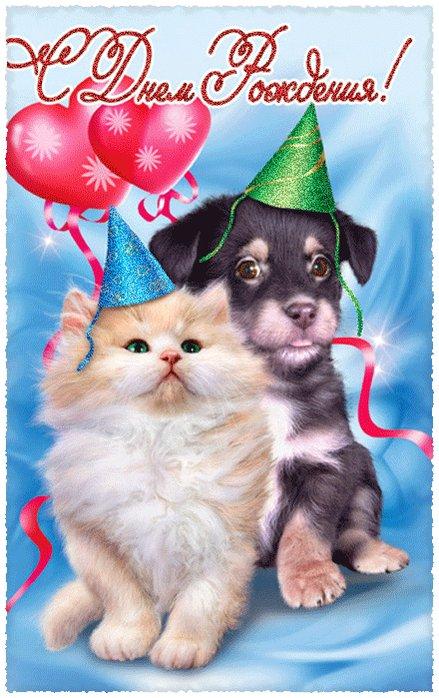 Папа дочкой, открытки с днем рождения кошки и собаки