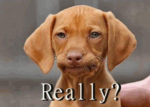 24 settembre e a #radio24 sento la pubblicità di #poltroneesofà con sotto jingle bell\