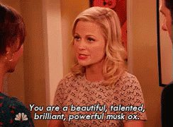 Happy birthday Amy Poehler, thank you for being so wonderful and influential.