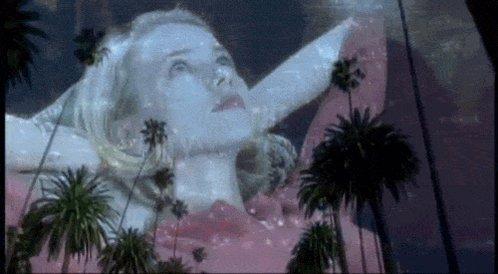 Last night I dreamt I went to Mulholland Dr. again.  Happy birthday, Naomi Watts!