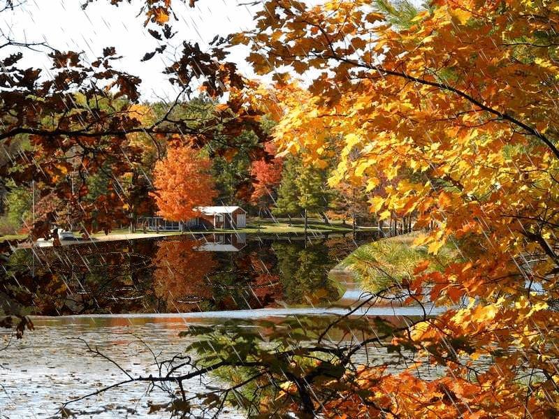 Осенние пейзажи гифы