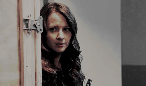 did i ever tell you about my love for amy acker?