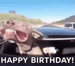 Happy birthday! Enjoy your day