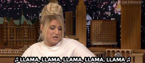 'Party In The U.S.A.' x llamas + @Meghan_Trainor = #FallonTonight