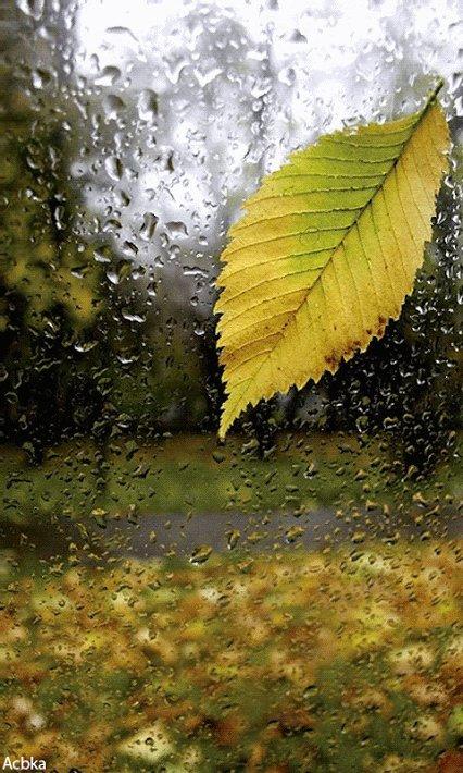 Le vent Gribouille Le paysage Les nuages Frissonnent Sur la vitre La pluie arrime Des larmes d\