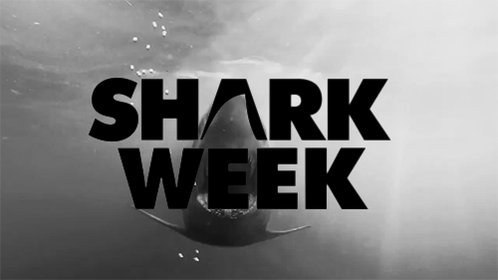 ITS SHARK W--oh, no. No, our mistake. Its not, in fact, Shark Week. ITS #MEDIATIONWEEK! Get our toolkit and find nearby events here: ambar.org/2Euh2nA