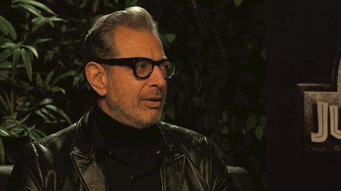 Happy birthday to my dream man, Jeff Goldblum