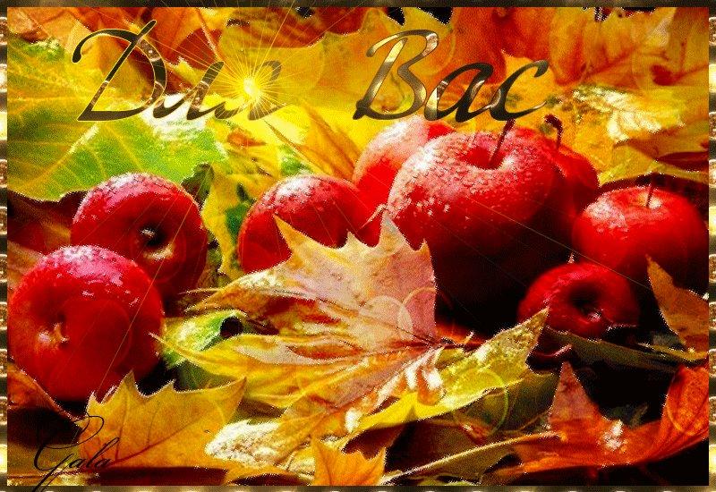 Картинки осень в сентябре с анимацией, своими руками