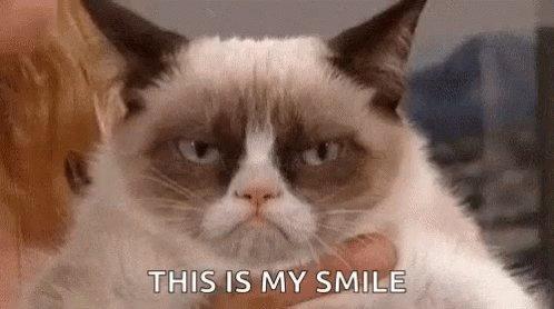 Siempre hay algo que me hace regresar a mi #grumpycatmood