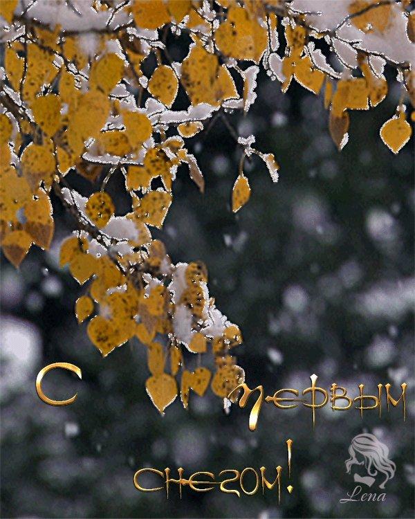 Короткое поздравление с первым снегом