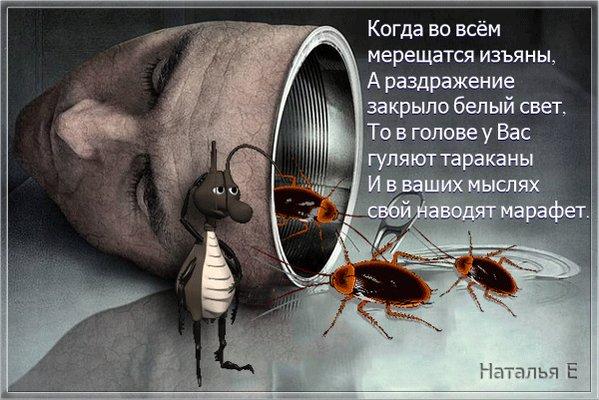 Открытка, открытка с тараканами