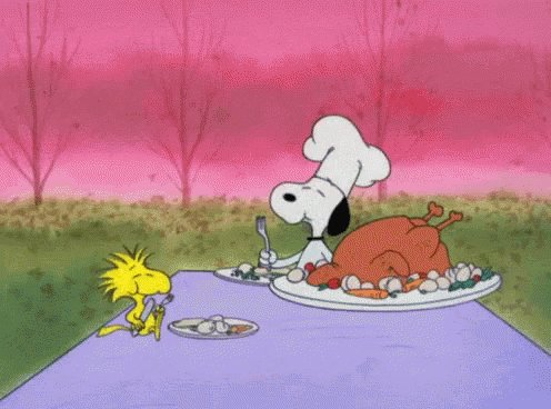 Happy Thanksgiving from LumenOptix!