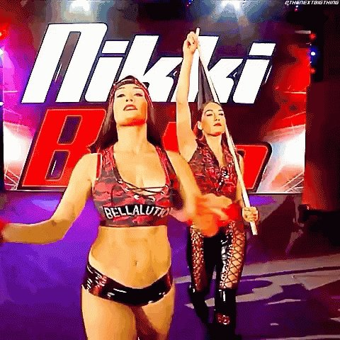 Happy birthday to Superstars Nikki & brie Bella 35 today