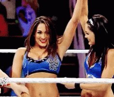 Happy Birthday To Nikki And Brie The Bella Twins