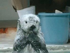 #RemoveALetterSpoilABook Harry Otter