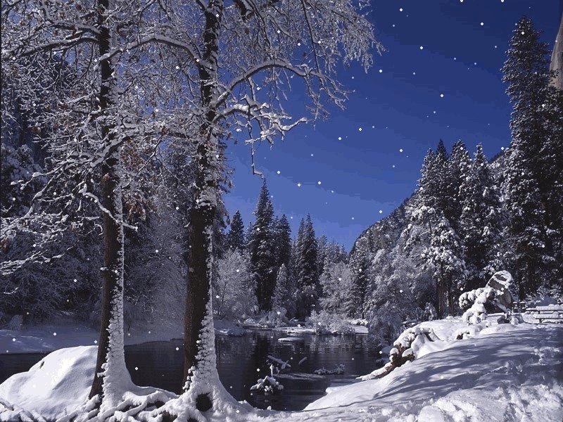 Зимний лес анимашки, путину движущиеся