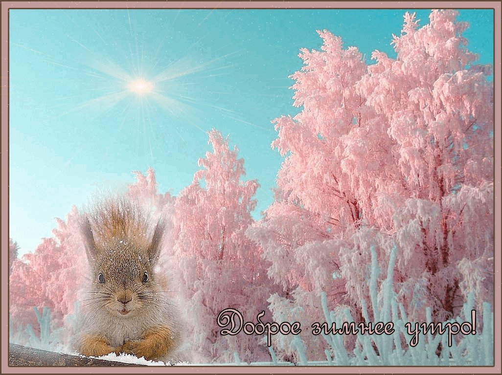 Снежные открытки с добрым днем, пожеланиями работе