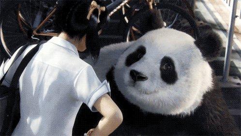 Прикольная, мерцающие открытки панда
