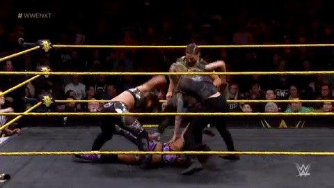.@MarinaShafir& @jessamyndukewant part of the action! #WWENXT
