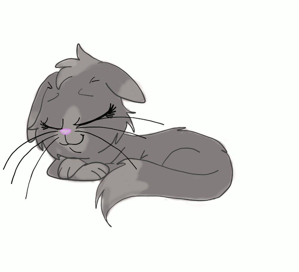 Кот картинки с анимацией