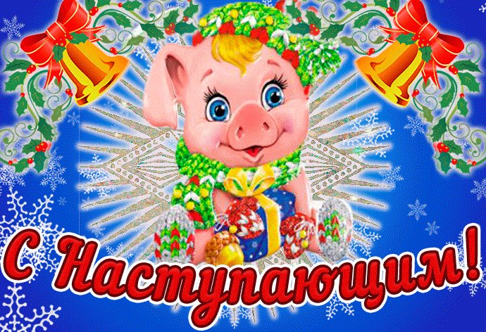 Открытки с новым годом наступающим 2019 свиньи