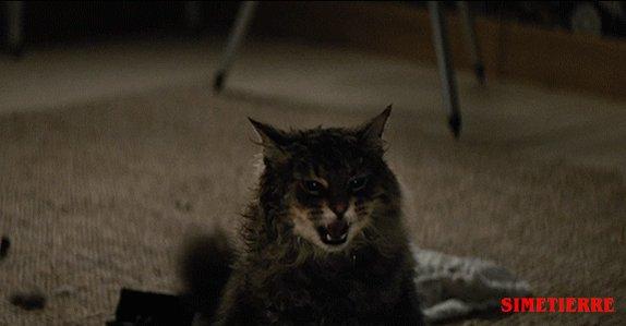 Paramount Pictures's photo on #LeFilmQuiMeFaitLePlusPeur