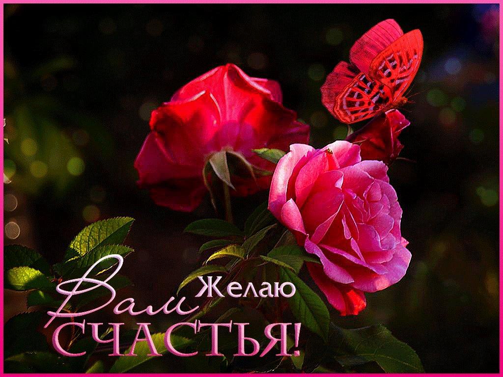 Камышинки схема, открытки о счастье любви и цветы