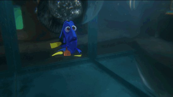 Nice, but I've seen Finding Dory so I'm not impressed.