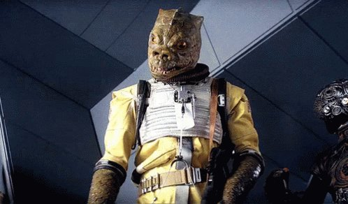 There should be a Star Wars sitcom called Who's The Bossk.